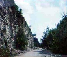 Renaturisierung des Steinbruchs am Feuerstein